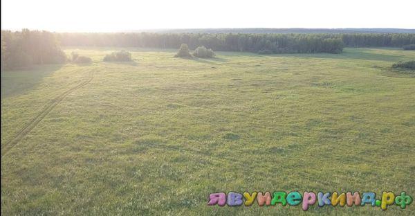 И поле
